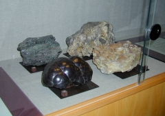Specimens of the minerals from the Karlovy Vary region